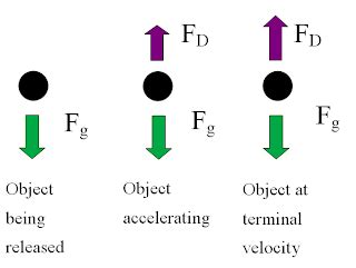 Homework and Key: Projectile Motion Packet - Physics and